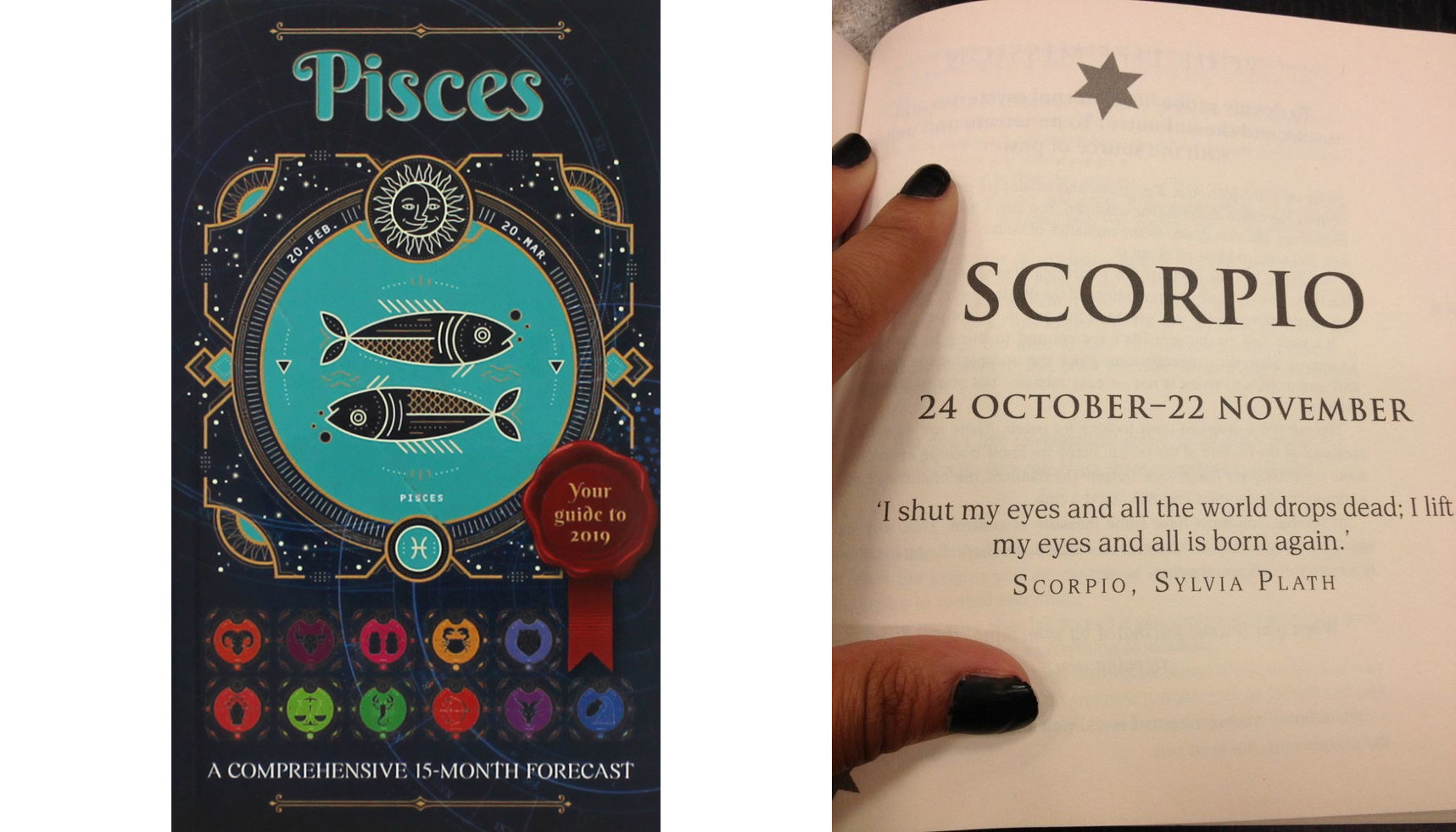 First sight and scorpio love pisces at Scorpio &